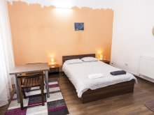 Accommodation Pleșcuța, Central Studio Apartment