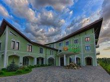 Accommodation Hălmăsău, Magus Hotel