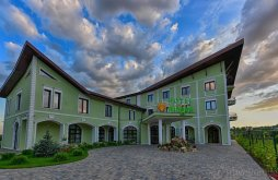 Hotel Biușa, Magus Hotel