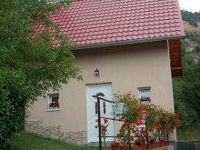 Casă de vacanță Mustești, Casa La Lepe