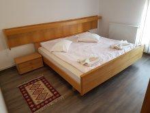 Accommodation Armășeni (Băcești), Wise Apartment