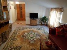 Szállás Viișoara, Rent Holding - Venetian Apartman