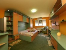 Accommodation Berzovia, Vidican 1 Apartment