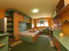 Apartament Ruginosu, Apartament Vidican 1