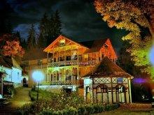 Accommodation Tulgheș, Borostyánkő B&B