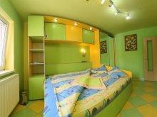 Apartament Ruginosu, Apartament Vidican 6