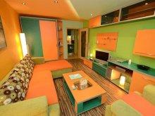 Apartament Ruginosu, Apartament Vidican 2