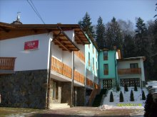 Accommodation Malnaș-Băi, Olt B&B