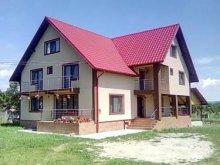 Accommodation Pleșoiu (Livezi), Ana-Maria B&B