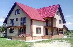 Accommodation Târgu Gângulești, Ana-Maria B&B