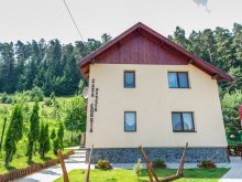 Accommodation Braşov county, Georgea Vacation home