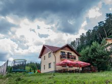 Accommodation Capu Piscului (Godeni), Georgea Vacation home