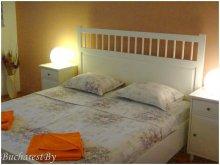 Accommodation Bălteni, Travelminit Voucher, White Studio Apartment