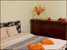 Accommodation Potcoava, Wenge Studio Apartment
