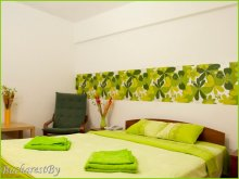 Apartament Buzău, Apartament Olive Studio
