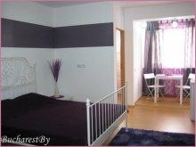 Accommodation Bălteni, Tichet de vacanță, Lila Studio Apartment