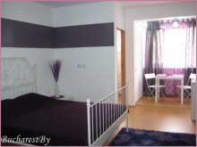 Accommodation Potcoava, Lila Studio Apartment