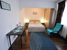 Accommodation Potcoava, Brown Studio Apartment