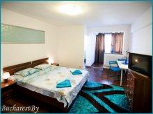 Accommodation Potcoava, Turquoise Studio Apartment