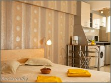 Accommodation Odaia Banului, Silver Studio Apartment