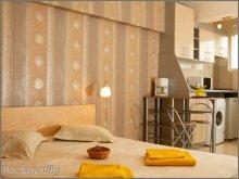 Accommodation Racovița, Silver Studio Apartment