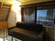 Accommodation Gyomaendrőd, Szabina vacation home
