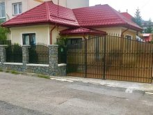 Accommodation Bughea de Jos, Bunicii Vacation home