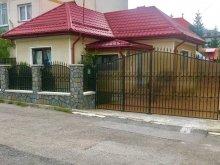 Accommodation Vama Buzăului, Bunicii Vacation home