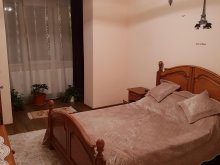 Cazare Miron Costin, Apartament Anca