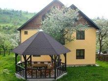 Pensiune județul Braşov, Pensiunea Monica