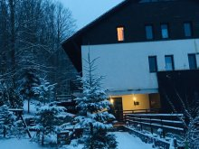 Accommodation Cuptoare (Cornea), Sara Guesthouse