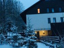 Accommodation Cuptoare (Cornea), Tichet de vacanță, Sara Guesthouse