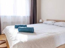 Accommodation Pleșcuța, Urban Apartament