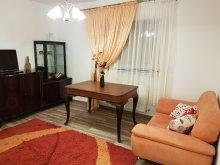 Accommodation Gura Bohotin, Classy Apartment