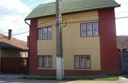 Vendégház Răstolțu Deșert, Shalom Vendégház