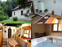 Accommodation Heves county, Kemencés - Wellness Apartment