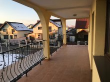 Accommodation Sibiu county, Silvia Villa