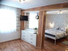 Apartament județul Sibiu, Garsoniera Maria