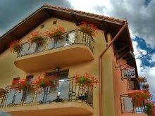 Accommodation Santăul Mare, Travelminit Voucher, Rad B&B