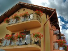 Pensiune România, Tichet de vacanță, Casa Rad