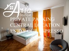 Accommodation Săldăbagiu de Munte, Aria Boutique Apartment