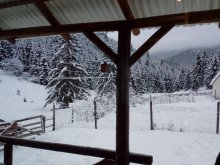 Accommodation Lacu Roșu, Csillag Chalet
