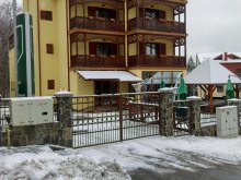 Accommodation Brădețelu, Ursu Villa