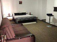 Accommodation Timișu de Jos, Style B&B