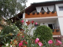 Accommodation Nagyfüged, Nimród Guesthouse