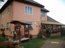 Accommodation Bistrița, Jutka Guesthouse