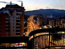 Accommodation Șeușa, Cityview Apartment
