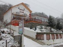 Accommodation Cungrea, Alpina Guesthouse
