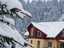 Accommodation Red Lake, Kristóf Chalet