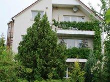 Accommodation Vértessomló, Donau Apartment